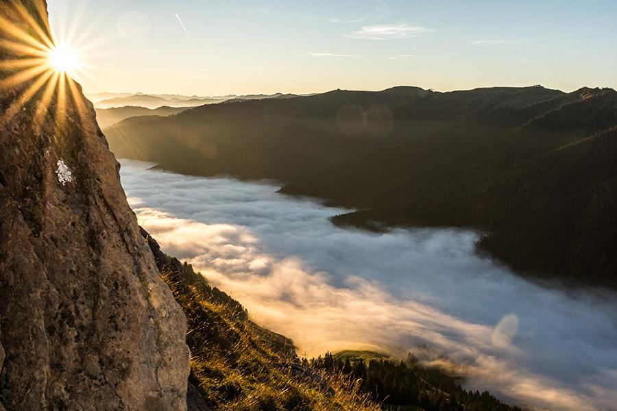 Gasthof Brentwirt: Wandern In Leogang